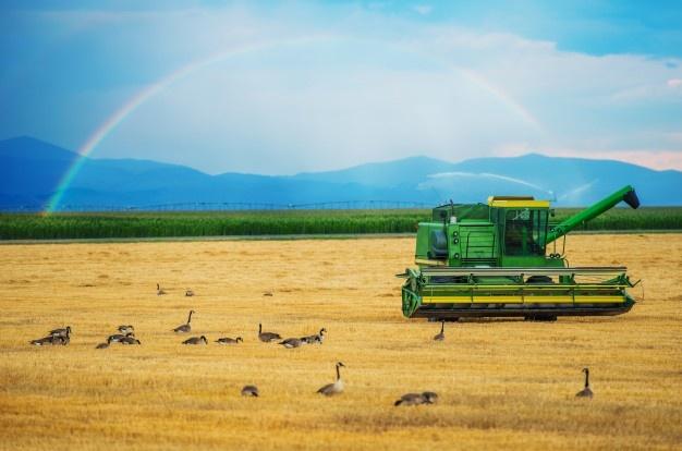 Kosilnice mulčerji nam omogočajo kakovostno košnjo in pripravo tal